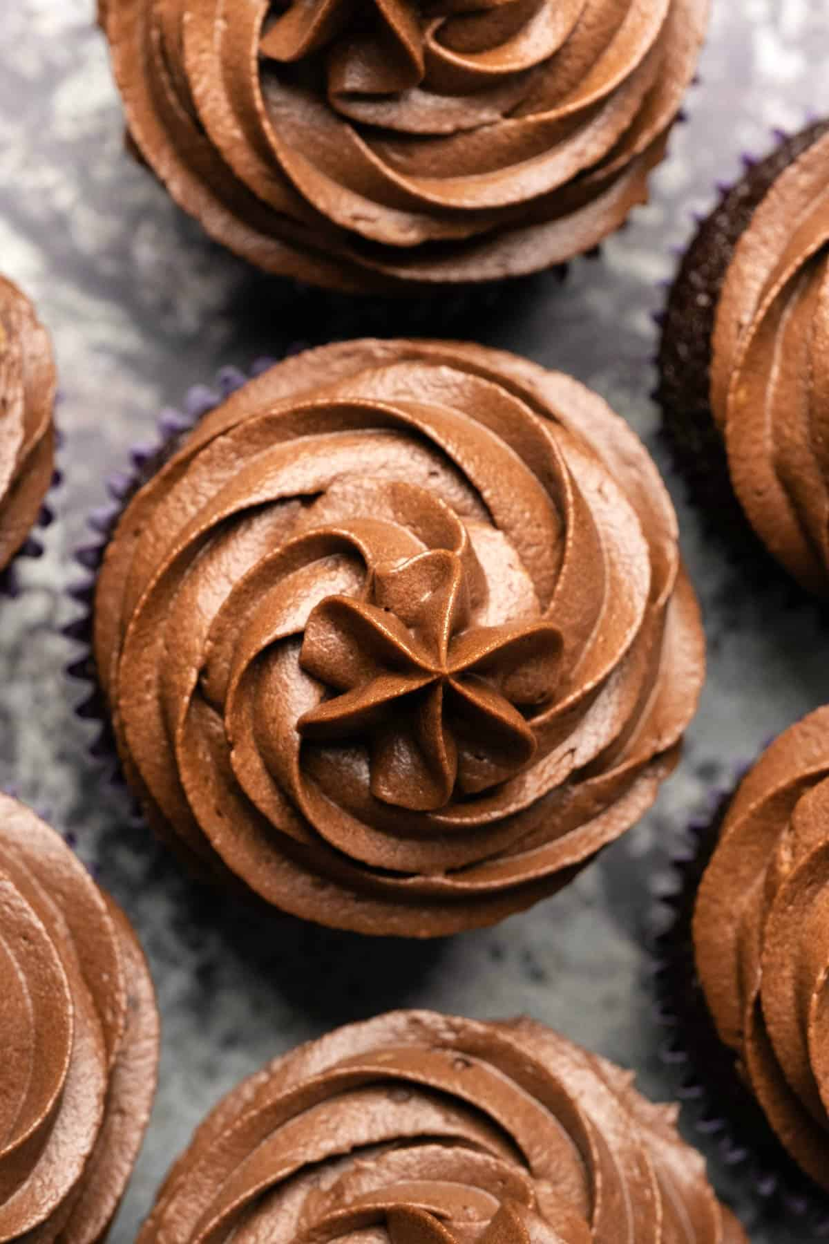 Cupcakes with chocolate buttercream frosting piped on top.