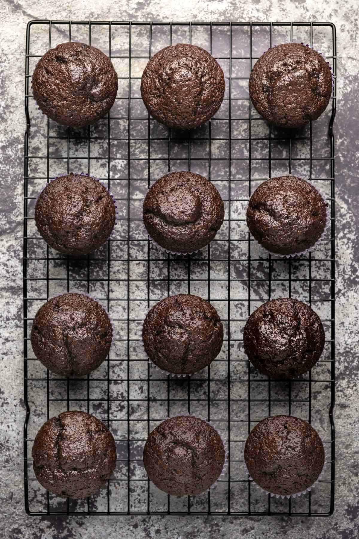 Freshly baked chocolate cupcakes on a wire cooling rack.