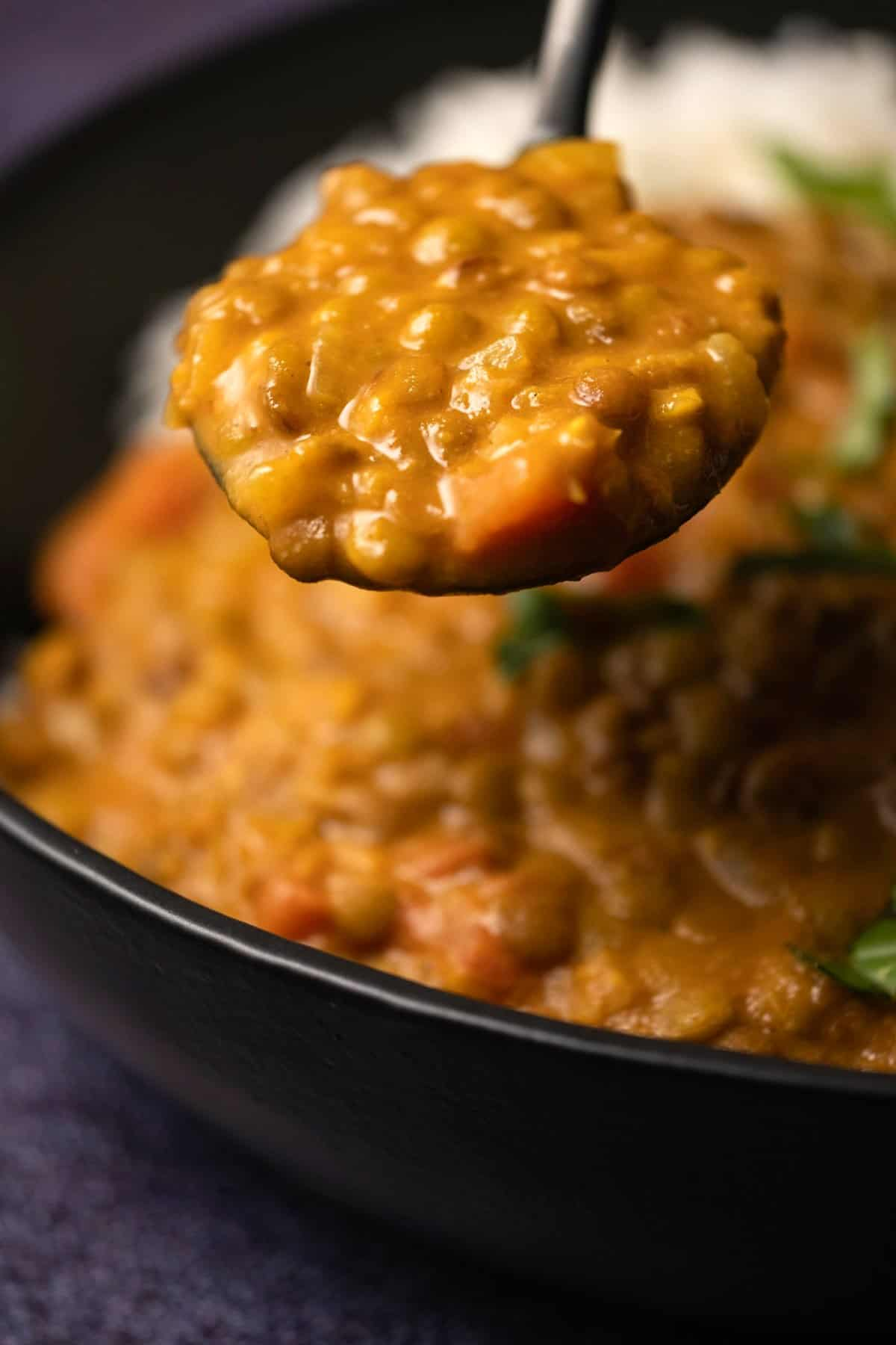 Spoonful of lentil curry over a black bowl with curry and rice.