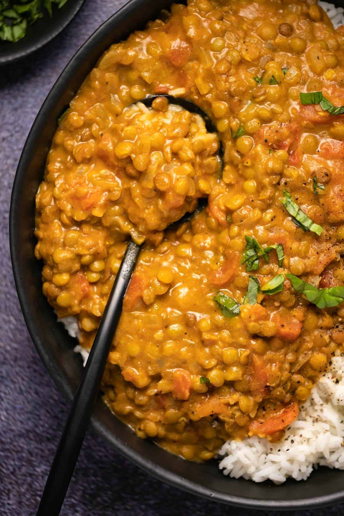 Lentil curry with rice in a black bowl with a spoon.