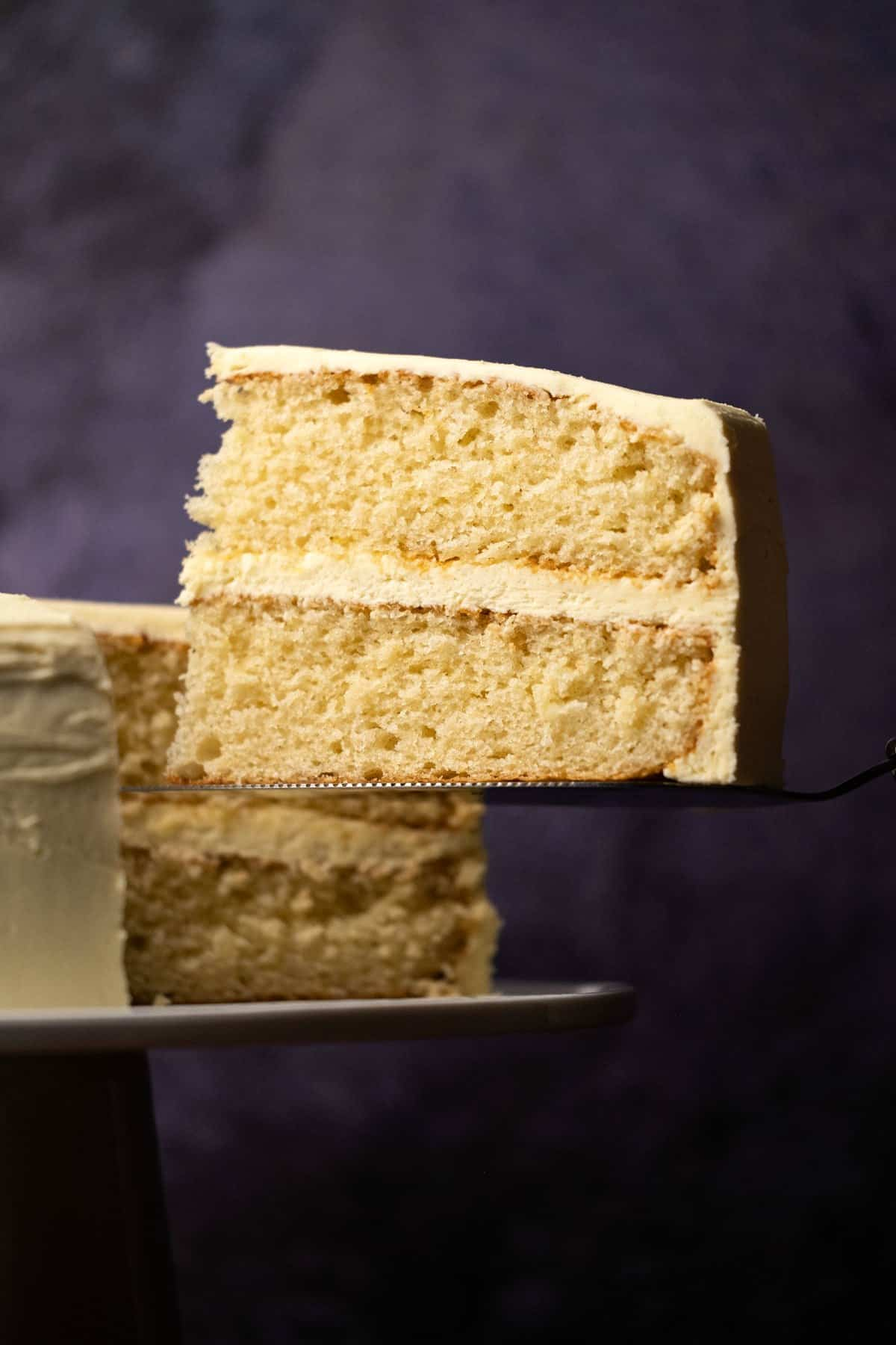 Slice of vanilla cake on a cake lifter.