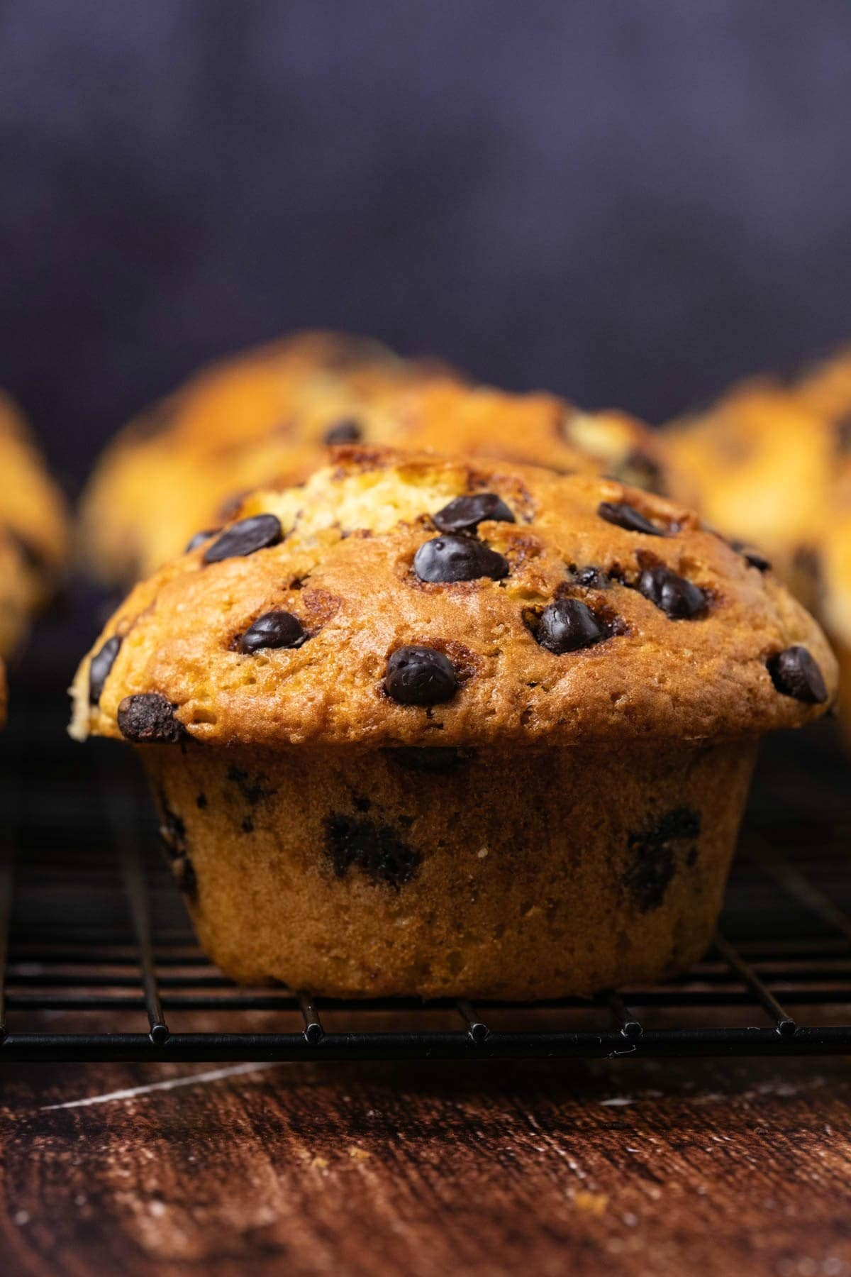Chocolate chip muffins on a wire cooling rack.