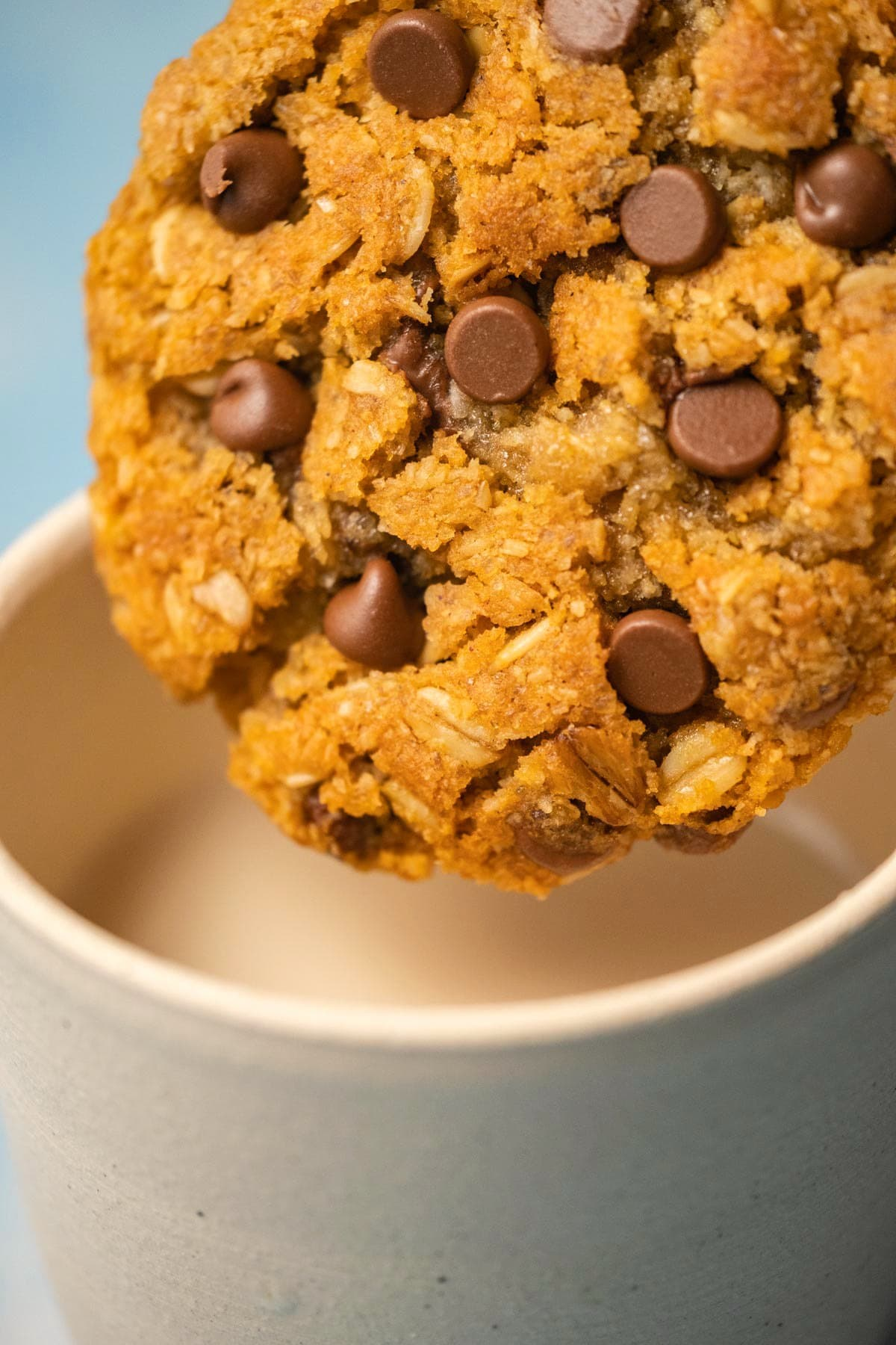 Oatmeal chocolate chip cookie about to dip into a cup of milk.
