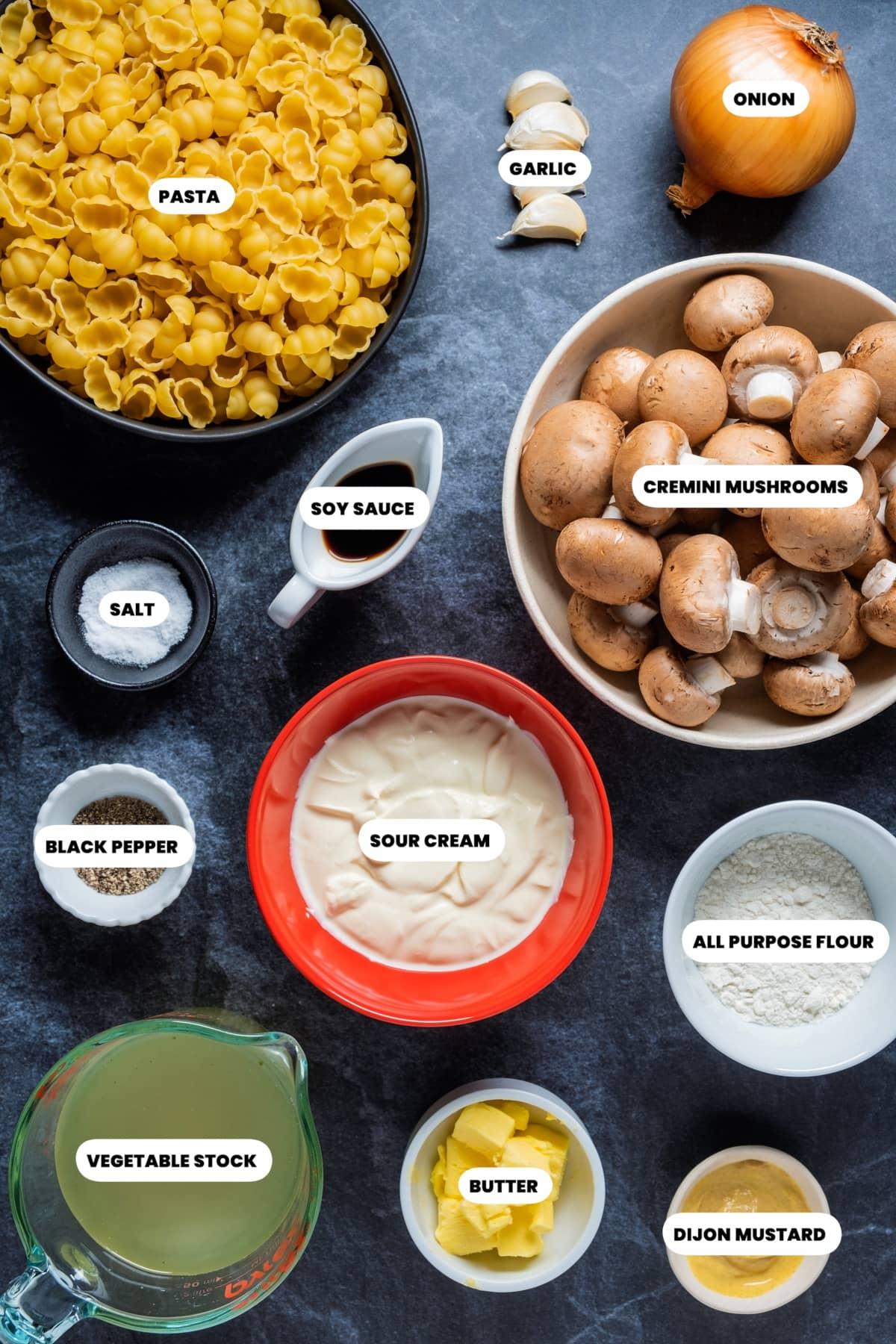Photo of the ingredients needed to make vegetarian stroganoff.